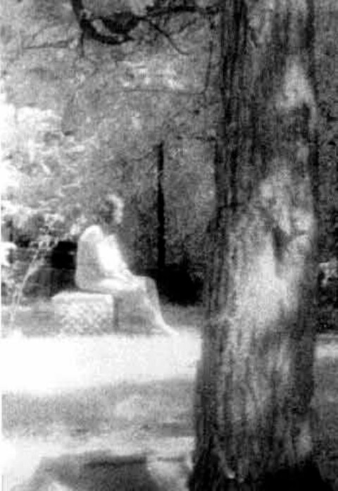 Haunted Artifacts - Bachelors Grove Ghost Photo - Ghost Walks Gift Shop